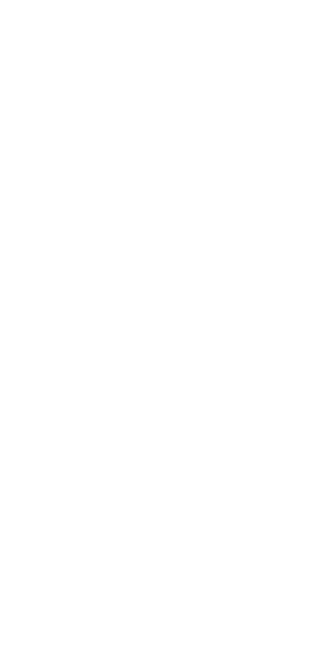 Flamenco foto