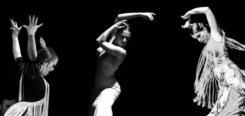 trio-bailaore-flamenco