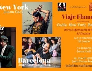 """Viaje Flamenco"" foto"